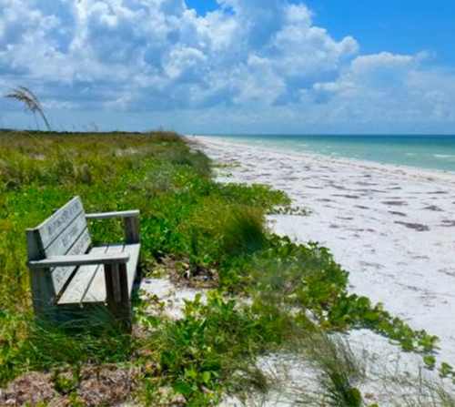 Photo of Honeymoon Island State Park