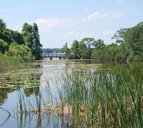 Photo of Boyd Hill Nature Preserve & Lake Maggiore Environmental Education Center