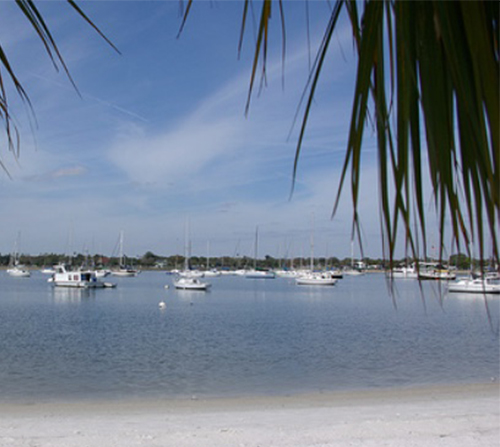 Photo of Davis Islands Beach