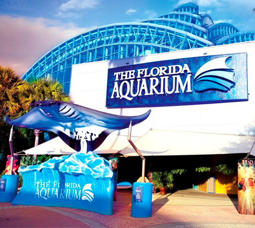 Photo of Florida Aquarium