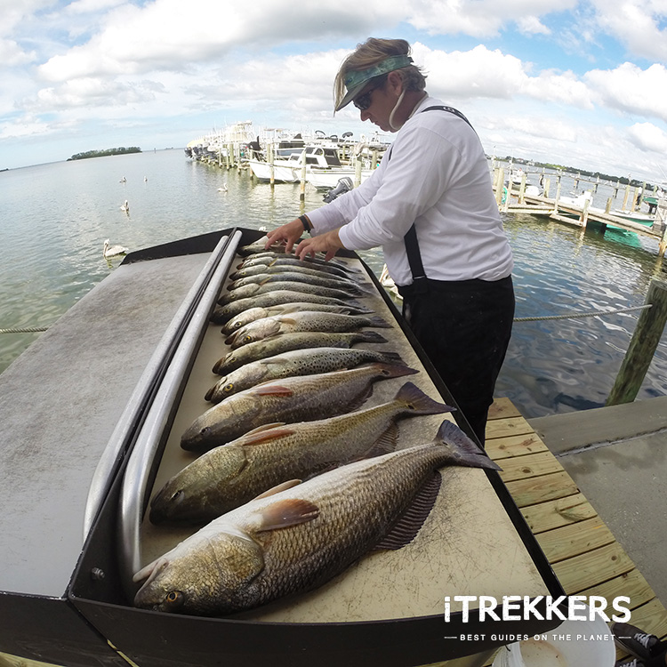 Photo of iTrekkers- Fishing Charter & Booking Service