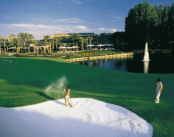 Photo of Saddlebrook Resort - Tampa