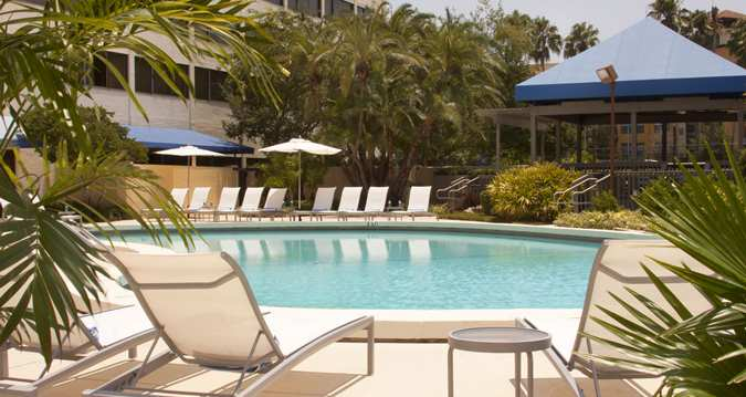 Photo of Bed Breakfast Football - Hilton Tampa Airport Westshore
