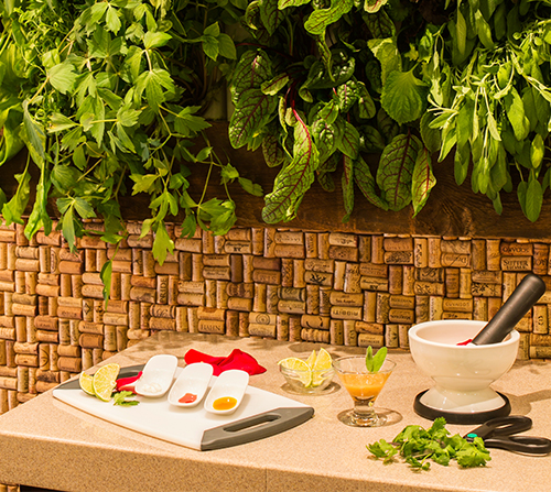 Photo of Appetizing Spa Tapas Offer at Spa Evangeline