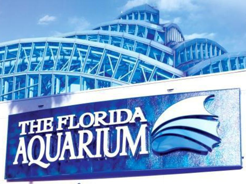 Photo of $3 Off Admission to The Florida Aquarium