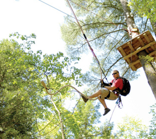 Photo of Rise & Climb Special at TreeUmph! Adventure Course