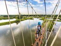 Flight of the Osprey Bridge