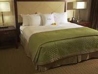 Hotel in Tampa King Room.jpg
