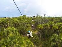 Zip line over the nature preserve