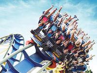 Montu Roller Coaster